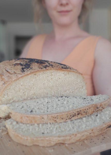 brood 1